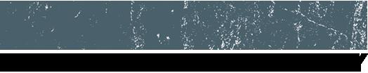 Shrimp Tales Logo